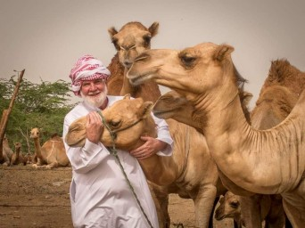 Sam with camels in South Jeddah, Saudi Arabia.