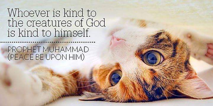 Abrahamic faith leaders emphasized kindness to others and to God's creatures.